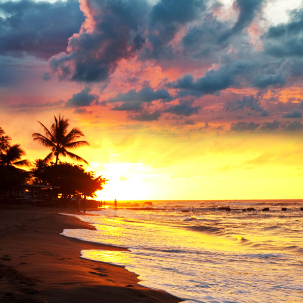Hawaii Holidays available in the Paradise of the Pacific