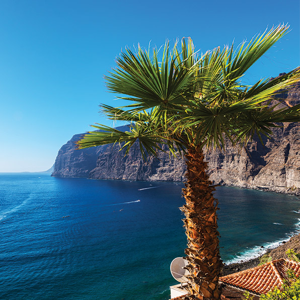 Travel to Tenerife oh your next Holiday